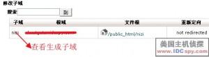 添加子域名教程