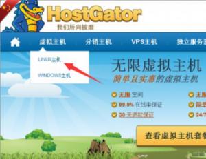 hostgator购买流程